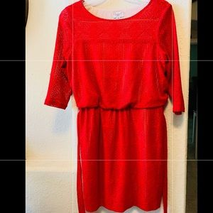 Maggie London Red Mesh Dress
